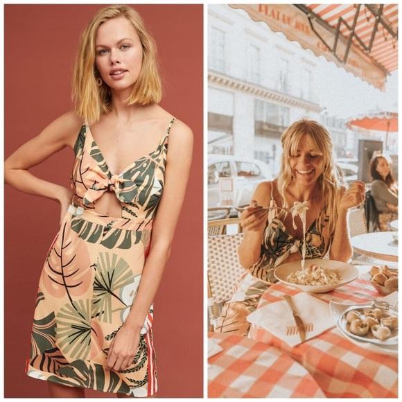 Anthropologie Dresses & Skirts - NWT Farm Rio Palm Mini Dress XL